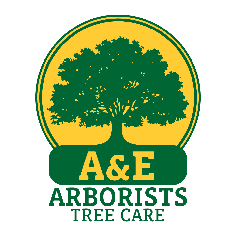 A&E Arborists Tree Care